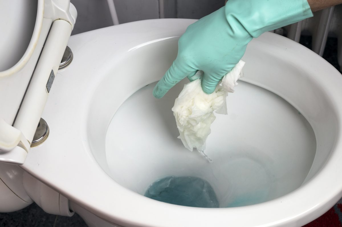 Will Clogged Toilet Unclog Itself | Drainage Networks | Drainage Specialists